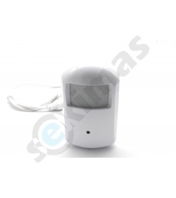 IP kamera wifi judesio daviklyje įrašinėjanti